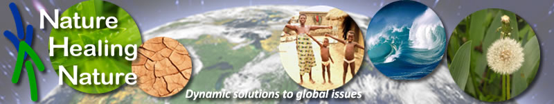 Nature Healing Nature - Dynamic solutions to global issues